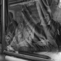 Отражение. :: Валерий Молоток