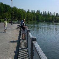 Москва.Измайловский парк :: Владимир Прокофьев