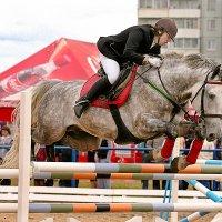 Кони в яблоках, кони серые.... :: Сергей Черных