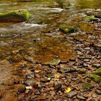 Осенний ручей :: Вальтер Дюк