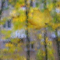 Осень за окном :: Serge Riazanov