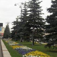 пейзаж :: Вера Александрова