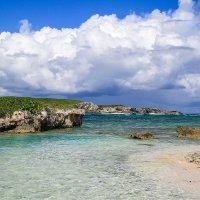 Карибское море :: Вера N