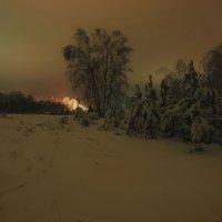 Январская ночь :: sergej-smv