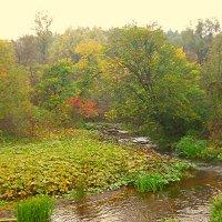 Осень :: Полина Николаева