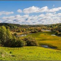 Золотится осень. :: Владимир Прынков