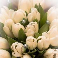 любимые цветочки :: Yulia Golub