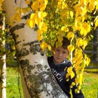 Осень желторотая :: Ольга Sad