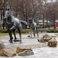 Аксайские лошадки :: Татьяна Смоляниченко