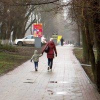 Хмурый день января :: Татьяна Смоляниченко