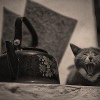 На печи в ночи :: Павел Крутенко