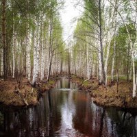 Майская акварель :: Анастасия Самигуллина