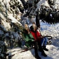 Декабрь... Под елью в ожидании Деда Мороза... :: Лидия Бараблина