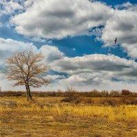 Ранняя весна :: Евгений Кирюхин