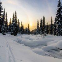 Одно морозное утро. :: Иван Иванов