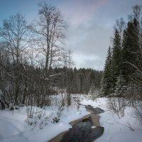 Лесной ручей :: Алекс Римский
