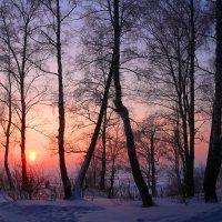 Январским вечером :: владимир тимошенко
