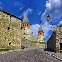 Каменец-Подольская крепость :: Роман Савоцкий
