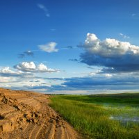 Заливные луга :: Александр Афромеев