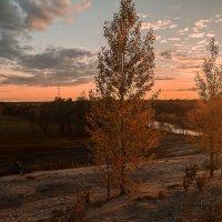 Летний вечер :: Оксана Галлямова
