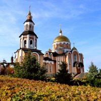 Храмы Свято-Алексиевского монастыря :: Лидия Бараблина