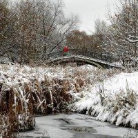 Долгожданный снегопад в Москве. :: Борис Бутцев