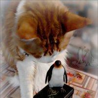 Послушай птичка, что я тебе скажу... :: Кай-8 (Ярослав) Забелин