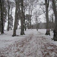 Зима в Бакуряни :: aleko pikaso