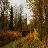Осенний парк. :: Евгений Королёв
