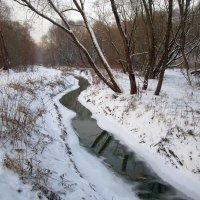 Река Чремянка в Москве :: Ольга Довженко