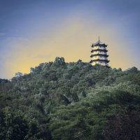 Пагода. :: Андрий Майковский