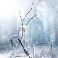Оттенки зимы :: Ekaterina Gl