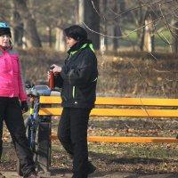Отдых в зимнем парке. :: barsuk lesnoi