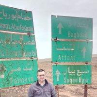 Дорога на Багдад поворот на Пальмиру :: Юрий Арасланов