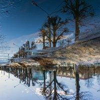 Вверх тормашкам-Городской пейзаж, отражение в воде :: Василий Цымбал