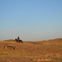 Один в пустыне... :: Хлопонин Андрей Хлопонин Андрей