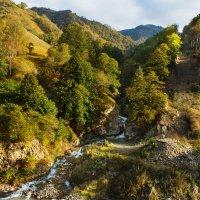 золотая осень на реке Гедмишх :: Александр Богатырёв