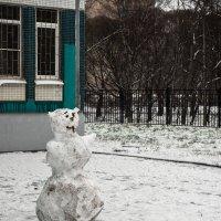 Какая зима такой и снеговик :: PRoBoF- Feofanen