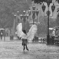 Одинокий ангел :: john dow