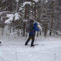 Лыжный поход :: Денис Бочкарёв