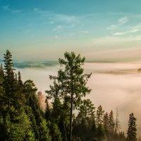 В объятиях тумана :: Татьяна Белоусова
