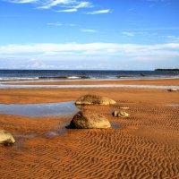 Финский залив :: Cергей Кочнев