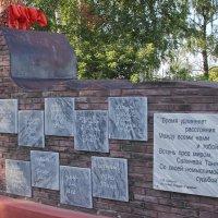 Могила ленинградки-блокадницы Тани Савичевой. г.Шатки. Нижегородская область :: MILAV V