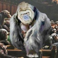 Бунт в благородном семействе или Брексит на планете обезьян :: irina Schwarzer