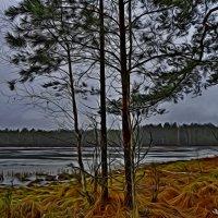 Сказочный берег... :: Vladimir Semenchukov