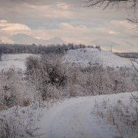 Редкие зимы в Краснодарском крае :: Игорь Сикорский