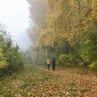 Осень на берегу реки Томь. :: Юлия
