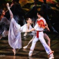 Балет, балет, балет. :: arkadii