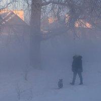 Дама с собачкой в тумане. (Зимний вариант) :: Сергей l