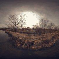 Река Кума :: Евгений Ромащенко